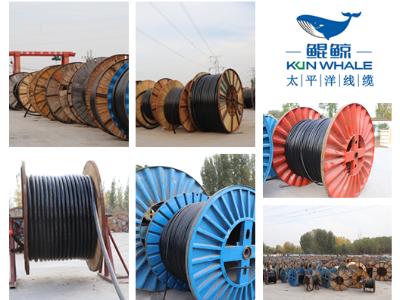 郑州电缆厂家带您了解电线电缆的重要性及用途