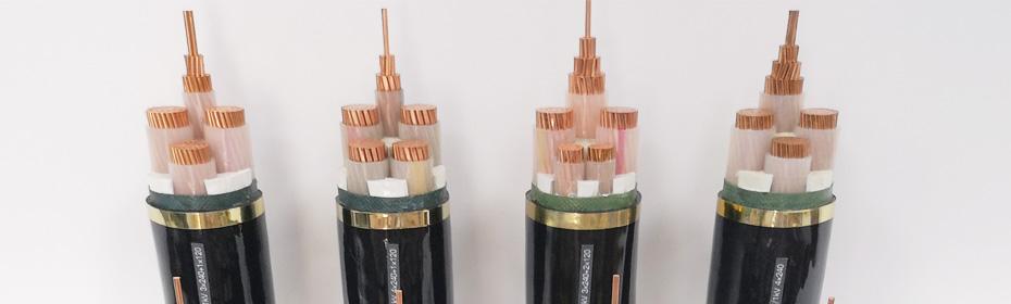 WDZN-YJY /WDZN-YJLY 0.6/1KV 低烟无卤耐火电力电缆系列