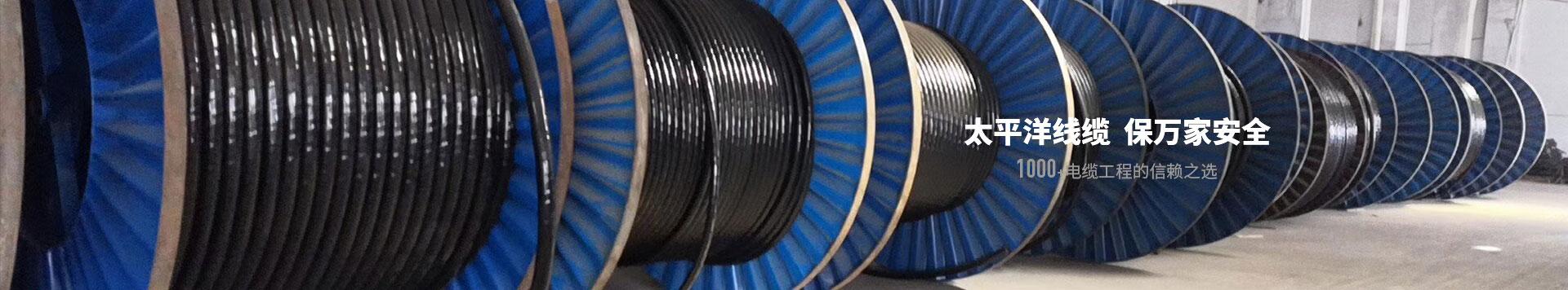 太平洋线缆全国案例
