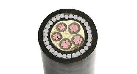 粗钢丝铠装电力电缆zryjv42