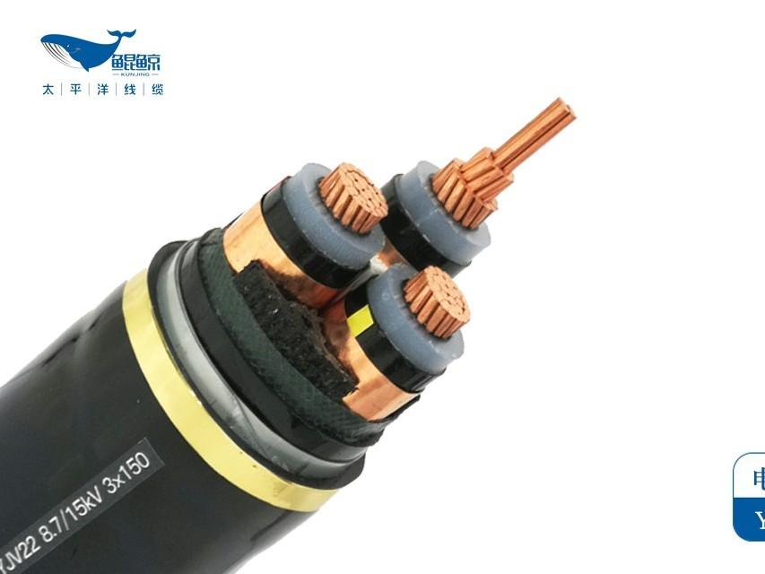 铠装电缆铜芯