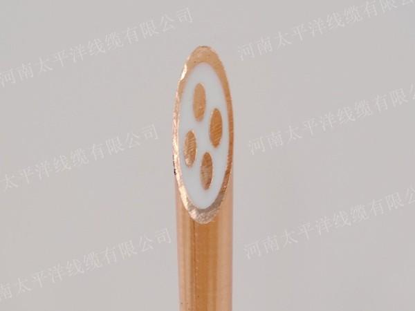 矿物质绝缘防火电缆bttz4*10平方电缆