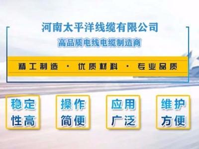 专业缔造高品质电力电缆!