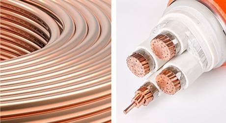 多芯矿物绝缘预分支电缆