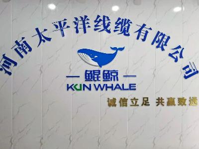 7-8月度总结会议在郑州太平洋线缆总部会议室举行