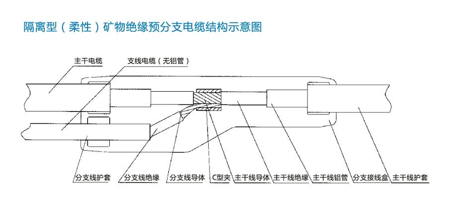 FZ-NG-A(FZ-BTLY)防火分支电缆结构图
