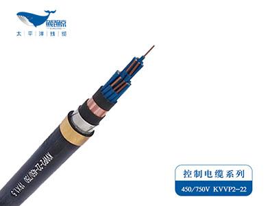 KVVP2-22铠装控制屏蔽电缆