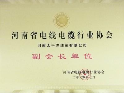 河南省电线电缆行业协会副会长单位
